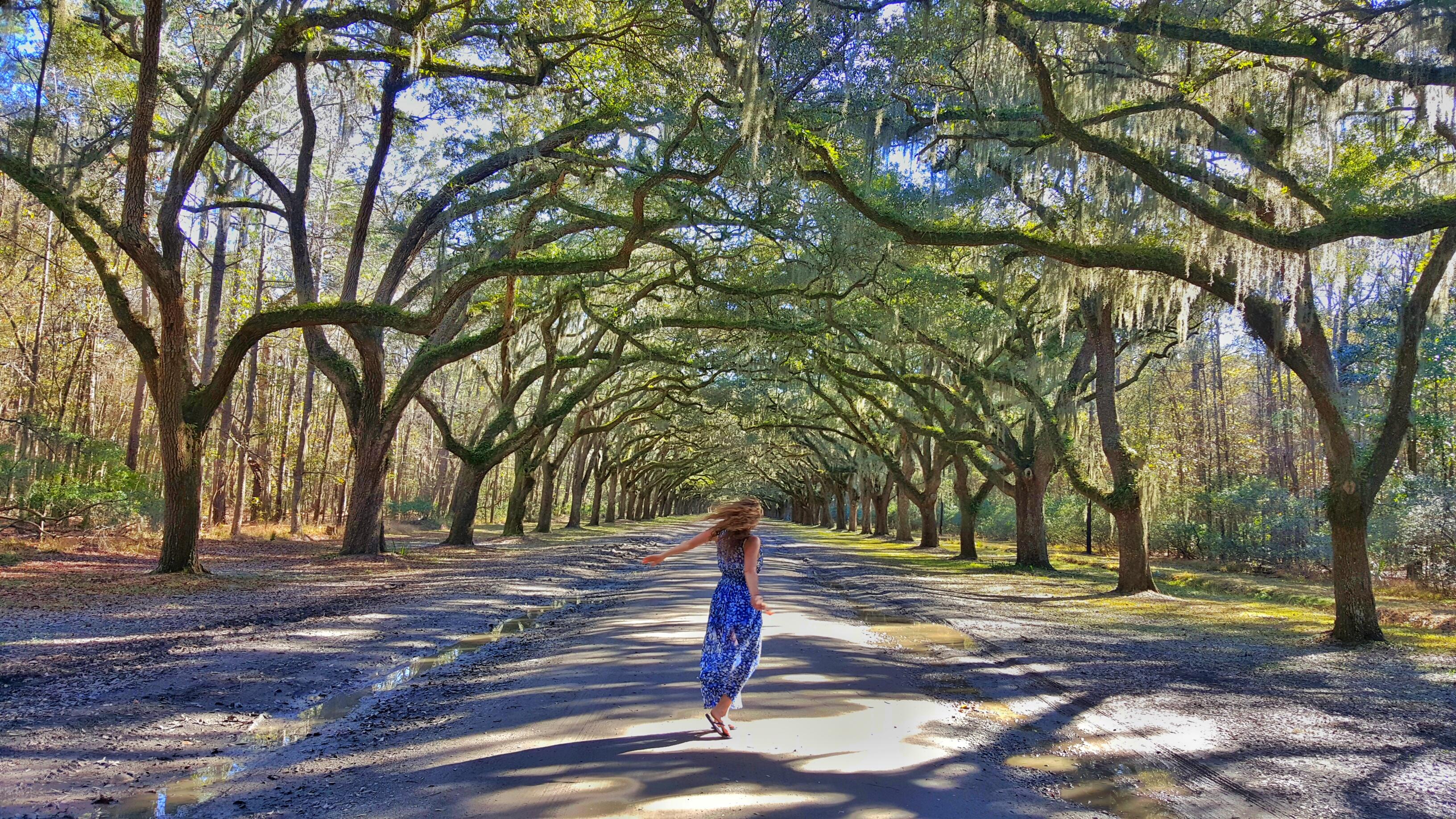 A Perfect Day in Savannah, Georgia