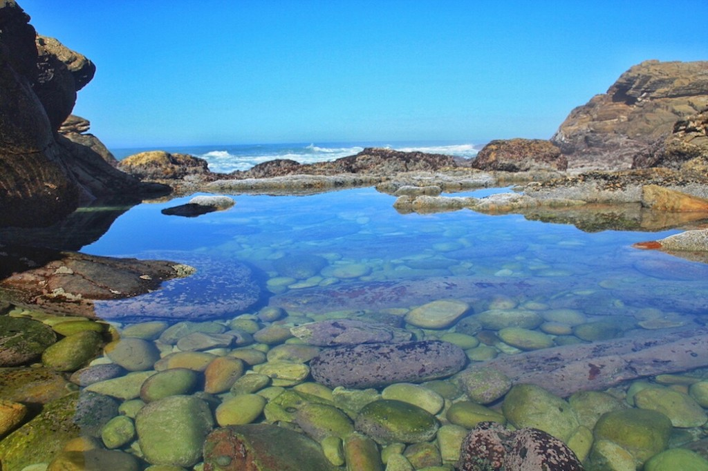 Tsitsikamma National Park, Nature Valley, Garden Route, Eastern Cape, South Africa