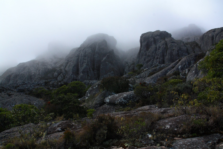 fog rolling in at Andringitra Mountains