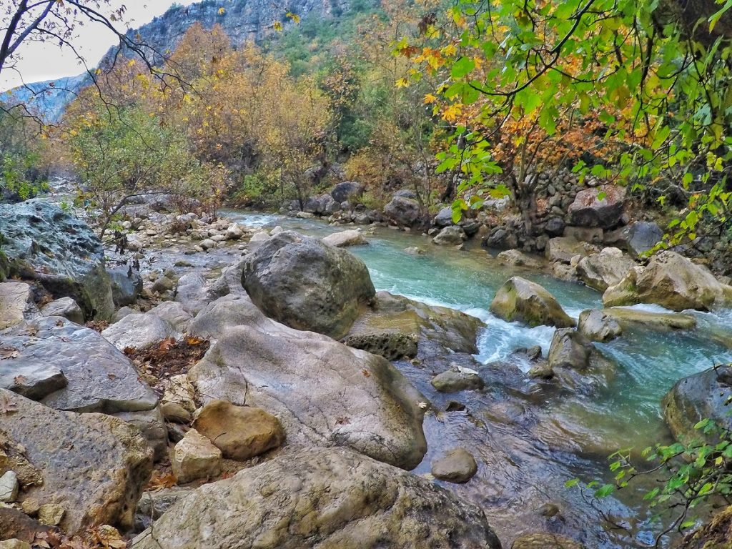 grean flowing Nahr Ibrahim River with foliage