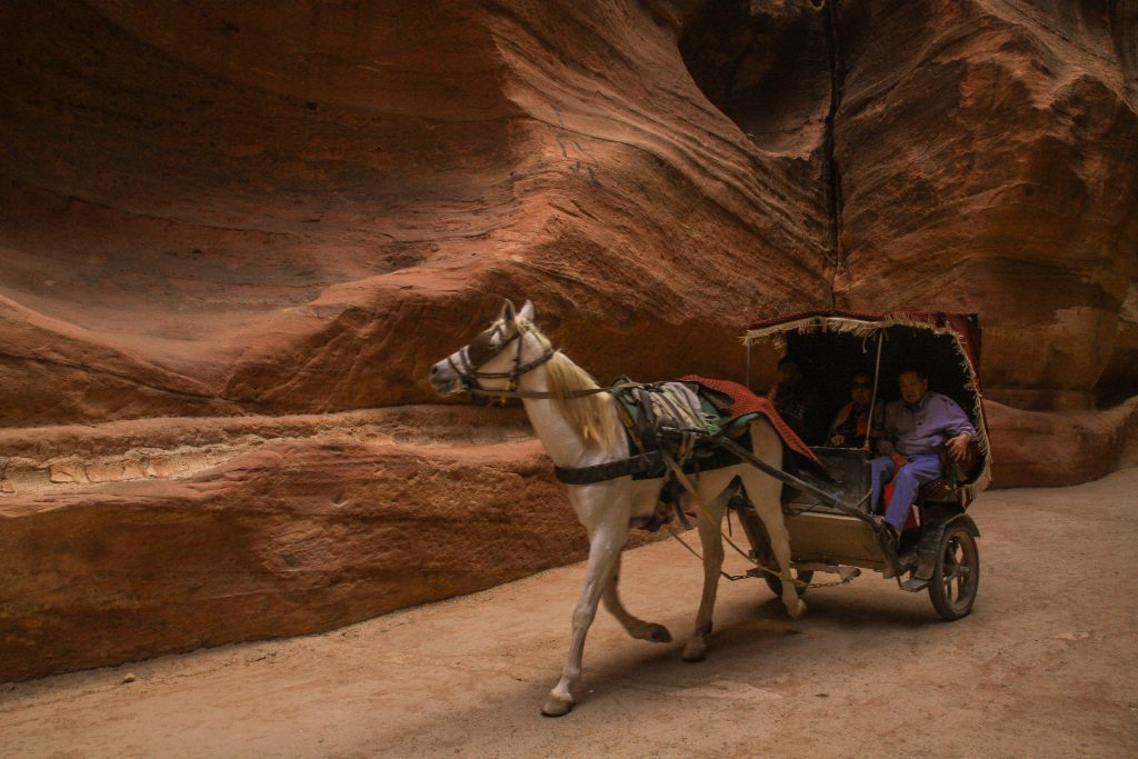 Petra One Day Itinerary. Check out more at www.beardandcurly.com