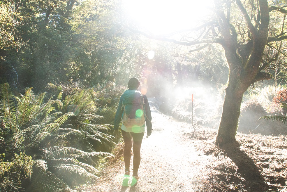 Milford Track, The Nine Great Walks of New Zealand, Check out more at www.beardandcurly.com