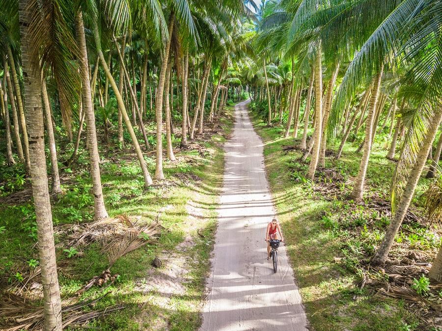 Palm tree lined road near Falealupo, Savaii, Samoa Country Guide, Ultimate Backpacking Guide to Samoa, Samoa on a Budget, Check out more at www.beardandcurly.com.