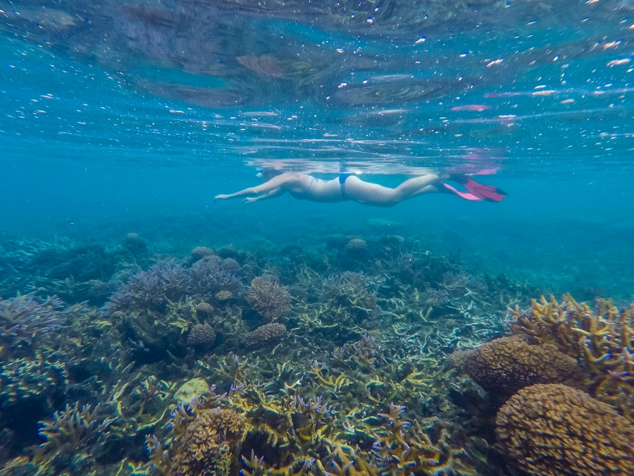 Snorkeling at Satuiatua Beach Resort Savaii, Samoa Country Guide, Ultimate Backpacking Guide to Samoa, Samoa on a Budget, Check out more at www.beardandcurly.com.