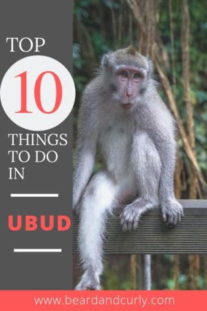 This covers the top 10 things to do in Ubud, Bali. It covers the best attractions, best waterfalls, and most scenic places near Ubud. Don't miss out on this awesome places! By: Beard and Curly (@beardandcurly)