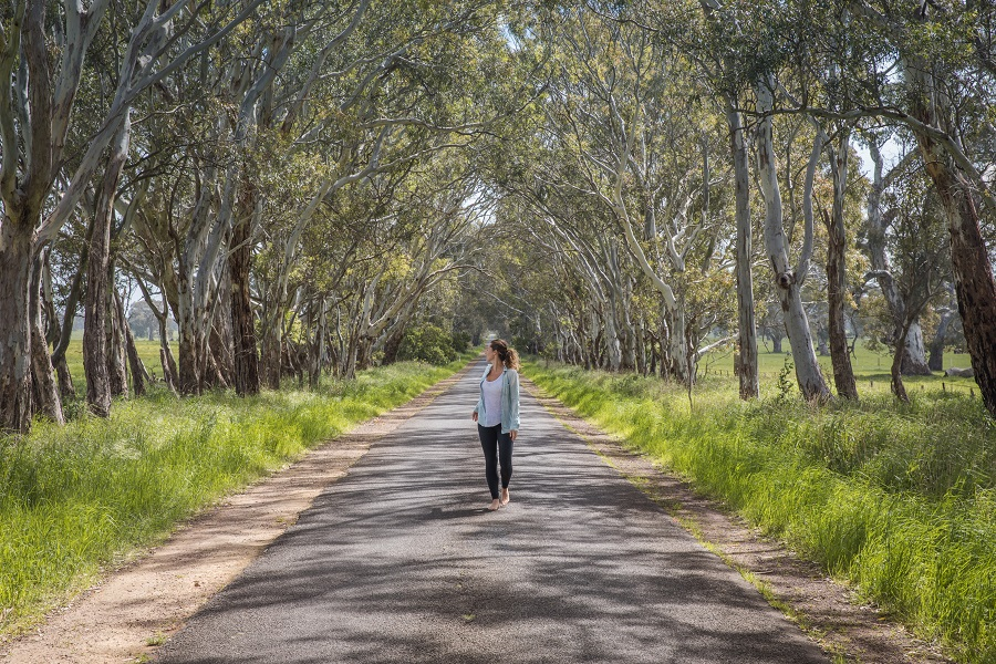 Ultimate Backpacking Guide to Australia, Queensland, Outback, New South Wales, Melbourne, Great Ocean Road, Trip, Itinerary, Itineraries, www.beardandcurly.com