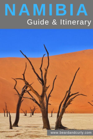 Namibia is a stunning country. The desert is amazing. The unbelievable Deadvlei and Sossusvlei is out of this world. Ethosa National Park is a place where you can see the Big 5. This guide is about how to self-drive around Namibia. You can DIY without a tour. This is the ultimate road trip in Africa. #namibia #africa #roadtrip By: Beard and Curly (@beardandcurly)